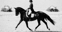 Carolyn Bateson Dressage Clinic