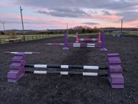 Grid Work/Pole Work/Cavaletti Clinic with Ashley Suddes
