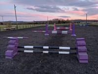 Grid Work/Pole Work/Cavaletti Clinic with Ashley Suddes