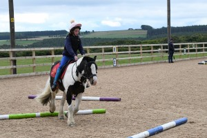 DURHAM & DISTRICT RIDING CLUB - Pole Work and Flat Work Clinic